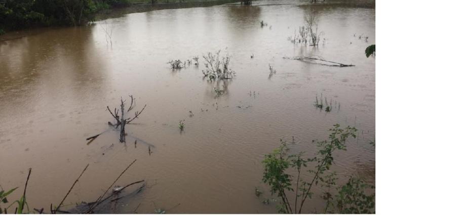 Une vue sur les pluies diluviennes à Tabou
